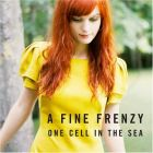 One Cell In The Sea (A Fine Frenzy)